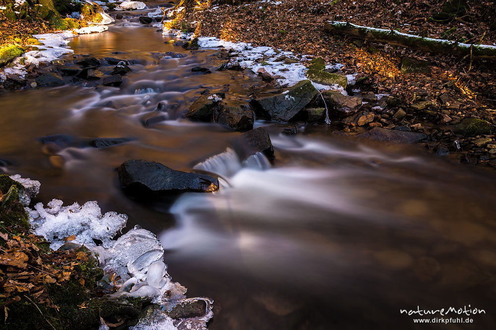 Bachlauf mit vereisten Ufern, fließendes Wasser, Niemetal, Löwenhagen, Deutschland - Foto: www.dirkpfuhl.de